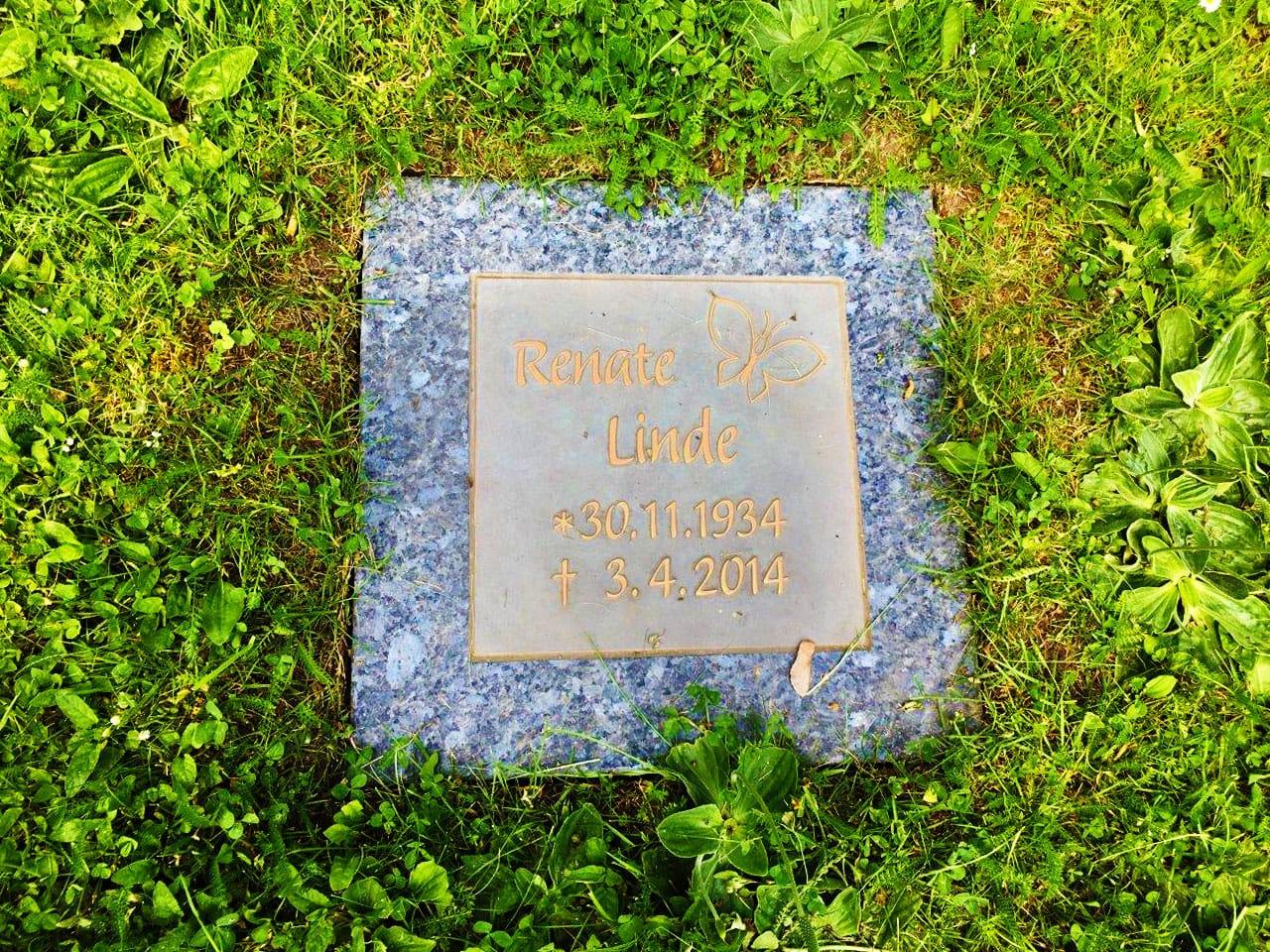steinmetz-horst-wiesengrab-urnenplatte-mit-schmetterling